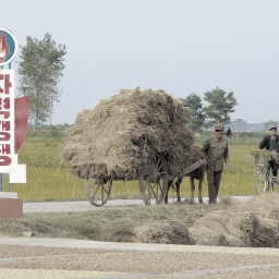 10 Facts About Food (Shortages) in North Korea