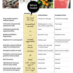 Food Safety Law Face-Off