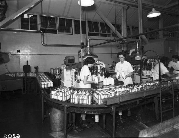 A pasteurization machine in Queensland, Australia, in 1953. via Wikimedia Commons.