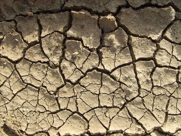 Dry soils (here in Argentina in 2007-08) = no food :(