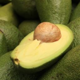 Costa Rica's Avocado Crisis
