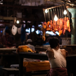Food In the Sustainable Development Goals: Great Ideas, But What About Demand?