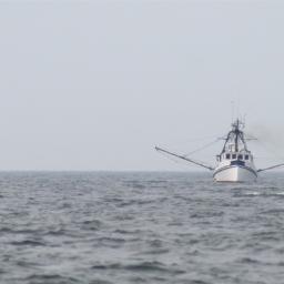 Fishing Slaves: Hidden Ordeals on the High Sea